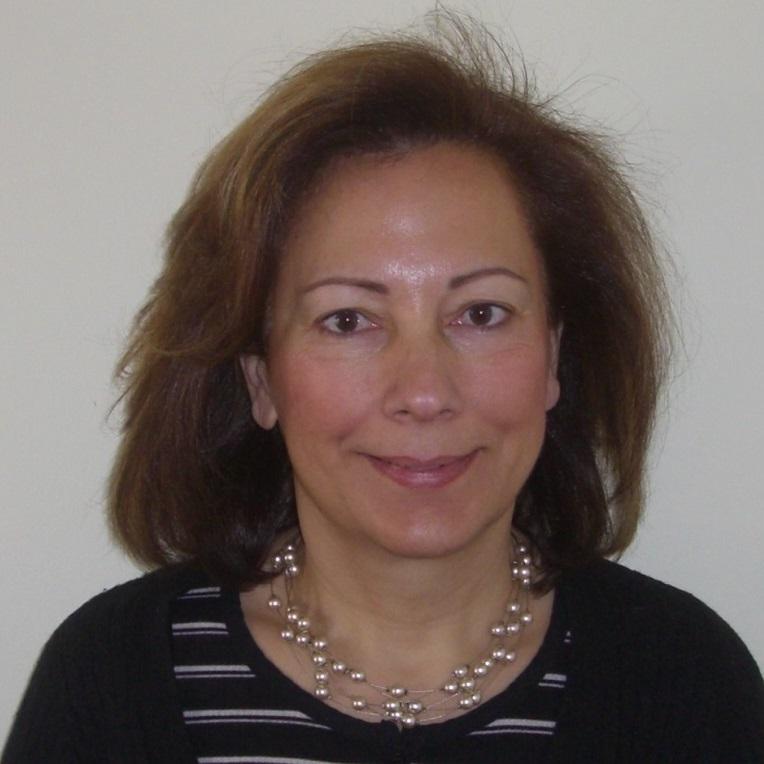 Η Πατρίνα Παπαρρηγοπούλου-Πεχλιβανίδη είναι μέλος του Δ.Σ.Α., δικηγόρος στον Άρειο Πάγο από το 1997 και δραστηριοποιείται κυρίως σε θέματα δημοσίου και ασφαλιστικού δικαίου.