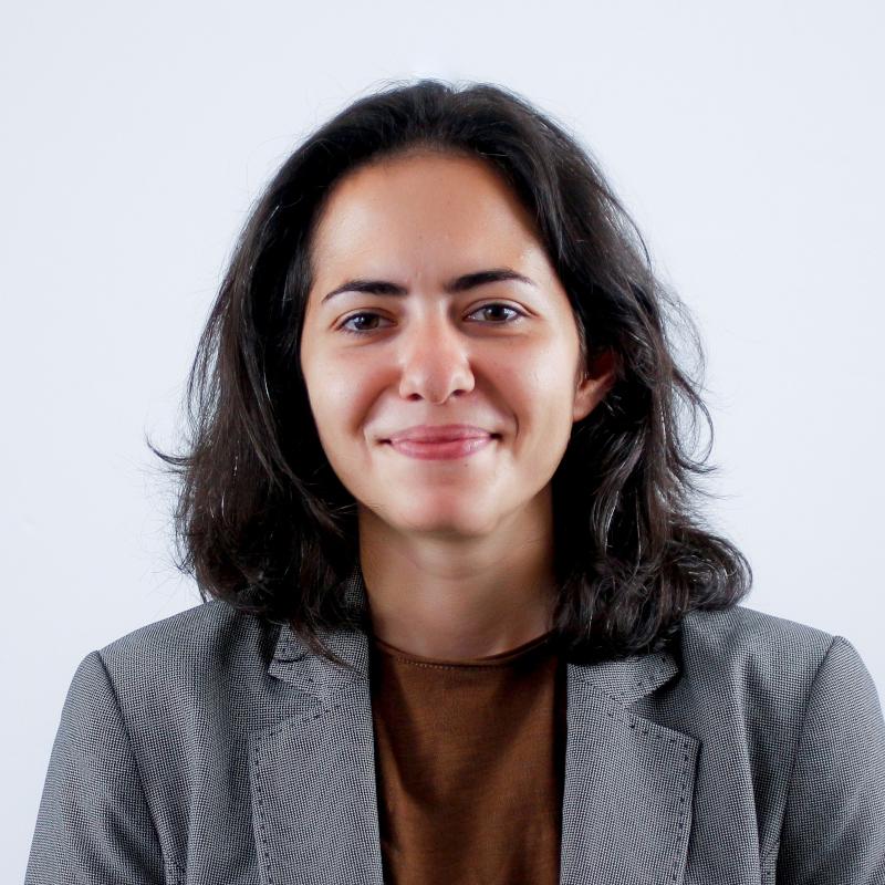 Κωνσταντίνα – Μαρία Κωνσταντίνου: Από το 2016 και μέχρι σήμερα απασχολείται εθελοντικά ως κειμενογράφος: wesolomon.com (Απρίλιος 2017 – Αύγουστος 2019), socialpolicy.gr (Μάρτιος 2018 – Σεπτέμβριος 2018) και crimetimes.gr (Μάρτιος 2018 – έως σήμερα) στις στήλες πολιτιστικών και κοινωνικών θεμάτων.