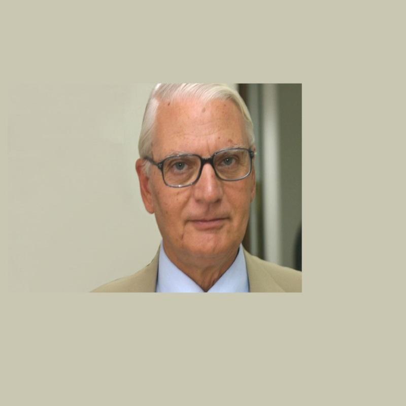 Ο Πέτρος Ι. Παραράς είναι Καθηγητής Συνταγματικού Δικαίου και Επίτιμος Αντιπρόεδρος του Συμβουλίου της Επικρατείας (ΣτΕ).
